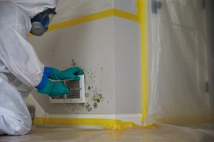 Mold Removal in Warsaw, IN