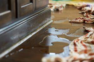 Water Damage Restoration in Auburn, IN 46706