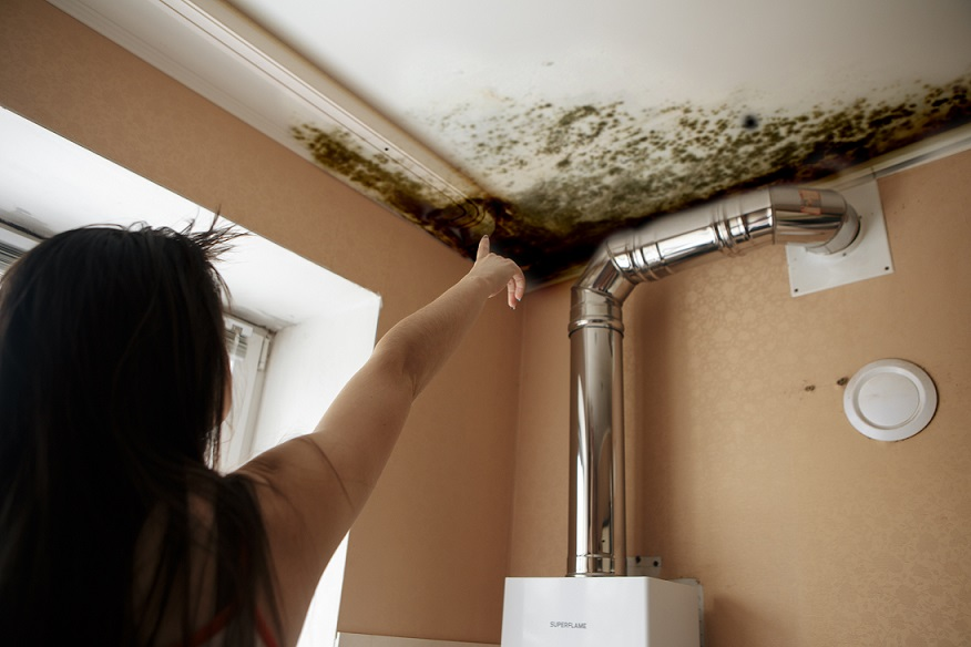 mold prevention tips fort wayne in