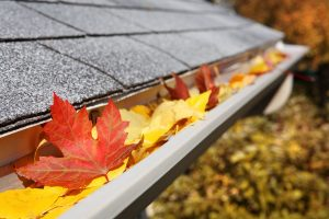 clogged gutters water damage fort wayne in