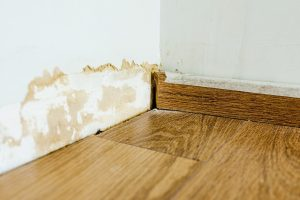 Skirting board on a wall damaged by mold.